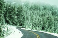 Winter Road (5123800807).jpg