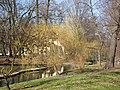 Wiosna wystartowała ,-)) 11 - panoramio.jpg