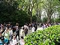 Wuhan University 20180406 095330.jpg