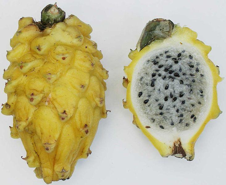 File:Yellow pitaya.jpg
