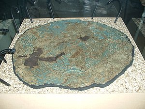 Cadbury Castle, Somerset - Yetholm-type shield from South Cadbury. Displayed at the Museum of Somerset, Taunton.