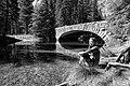 Yosemite (14359741479).jpg