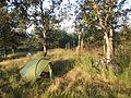 Zona libre Acampada en Camping Santa Colomba - panoramio.jpg