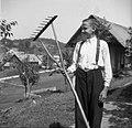 """""""Čenene grable"""" (grablje), Polica, pri Bubnarji 1949.jpg"""