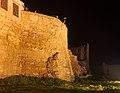 Βυζαντινά τείχη Χανίων 7829.jpg