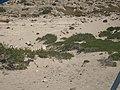 Παραλία Βαθύ Αστερουσίων2 - Vathy Beach in Asterousia Mounts, HERAKLION.jpg