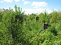 Єврейське кладовище Дрогобич панорама2.jpg