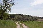 Вид на Харчатовский лес.jpg