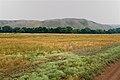 Горы по правому берегу речки Алимбет - panoramio.jpg