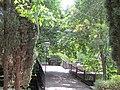 Комплекс дач-готелів П. І. Губоніна. 061.JPG