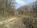 Короткая дорога Северный - Шопино (5).jpg