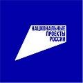 Национальные проекты России.jpg