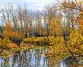 Осенние краски. - panoramio.jpg