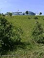 Парк слави влітку - panoramio (1).jpg