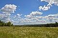 Природний об'єкт цілини, вул. Червонопрапорна,76.jpg