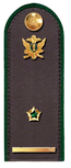Секретарь ГГС РФ 3 класса ФССП.png