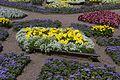 Собственный садик - panoramio (4).jpg