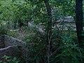 Старые очистные сооружения - panoramio.jpg