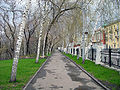 Струковский сад 4.jpg