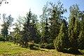 Сумський ботанічний сад.jpg