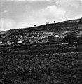 הכפר דבוריה לרגלי הר תבור 1928 - iדר אלקןi btm1589.jpeg