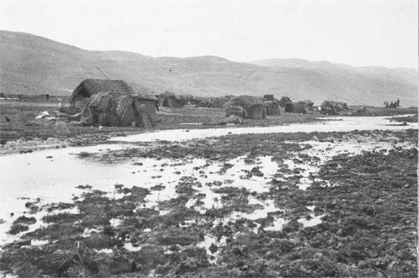 מחנה בדואים בביצות החולה-JNF008843.jpeg
