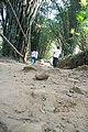 น้ำตกศรีดิษฐ์ Sri Dit waterfall - panoramio - Thaweesak Churasri (28).jpg