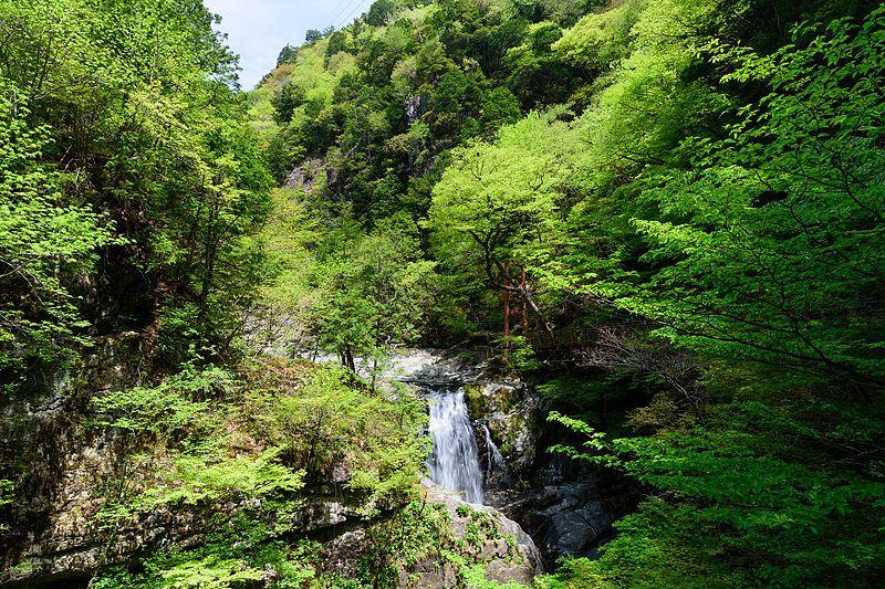みたらい渓谷・みたらい滝