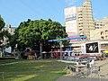 南方公園裡的大榕樹 - panoramio.jpg