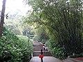广州越秀公园 - panoramio.jpg