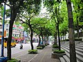新北市 新莊區 - panoramio.jpg