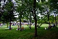 星観緑地(Hoshimi Green space) - panoramio.jpg