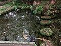 水出し観音湧き水 - panoramio.jpg