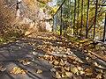 秋叶满径 - Fallen Leaves - 2012.09 - panoramio.jpg