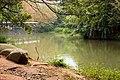 麗池 Lichi Lake - panoramio (2).jpg