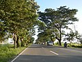 01361jfWest Halls Highways Fields Cupang Balanga City Bataanfvf 28.JPG