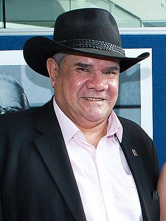 Mick Dodson - Dodson in 2014