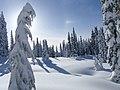 04 MORA Winter - 31335684148.jpg