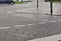 11-08-21-jaguar-im-regen-by-RalfR-15.jpg