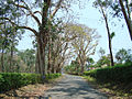 11Valpara Road4.JPG