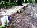 13 Confederate Soldier Graves on the Natchez Trace.jpg