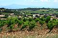 140614 Chateauneuf-du-pape-04.jpg