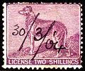 1904 Dog licence stamp.jpg