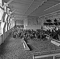 1960 Station Avicole au CNRZ-9-cliche Jean Joseph Weber.jpg