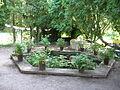 19 Zámek Veltrusy, kuchyňská zahrada.jpg