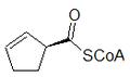 2-Ciclopentenil CoA.png