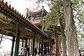 2010 CHINE (4563562123).jpg