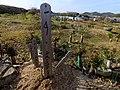2013-01-05 Wood stûpa Graves in Ogo,Kobe,Hyogo prefecture 神戸市北区淡河町の墓地と木製卒塔婆 DSCF4046.JPG
