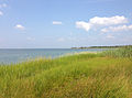 2013-08-21 11 55 00 View north-northwest across marshes along the shore of Barnegat Bay from the sand road to Barnegat Inlet in Island Beach State Park.jpg