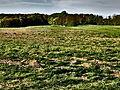 20130505 Plateau van Caestert 07.JPG